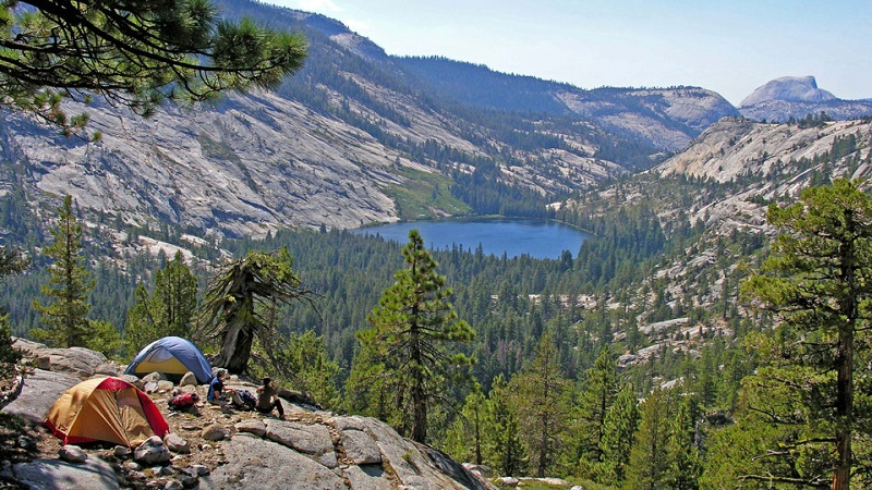 Yosemite National Park Facts: How To Visit And Where To Stay