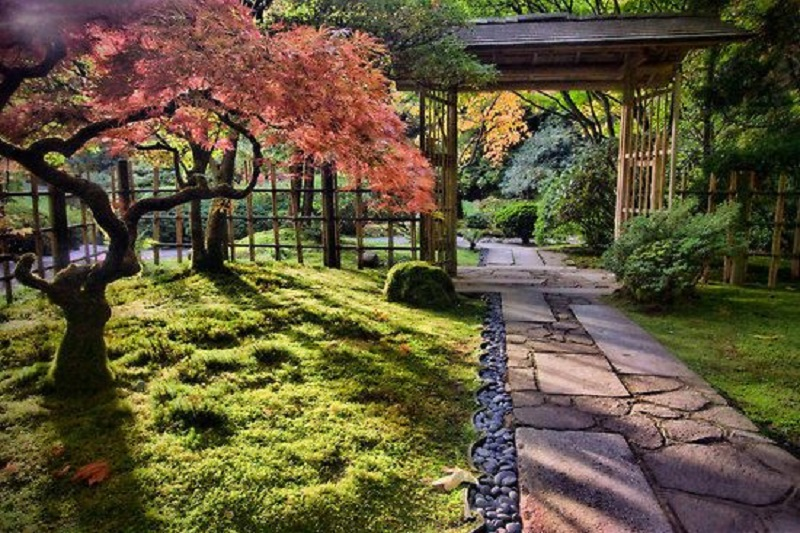 Moment of appreciating the Japanese garden