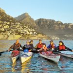 Kayaking in Cape Town between dolphins and whales