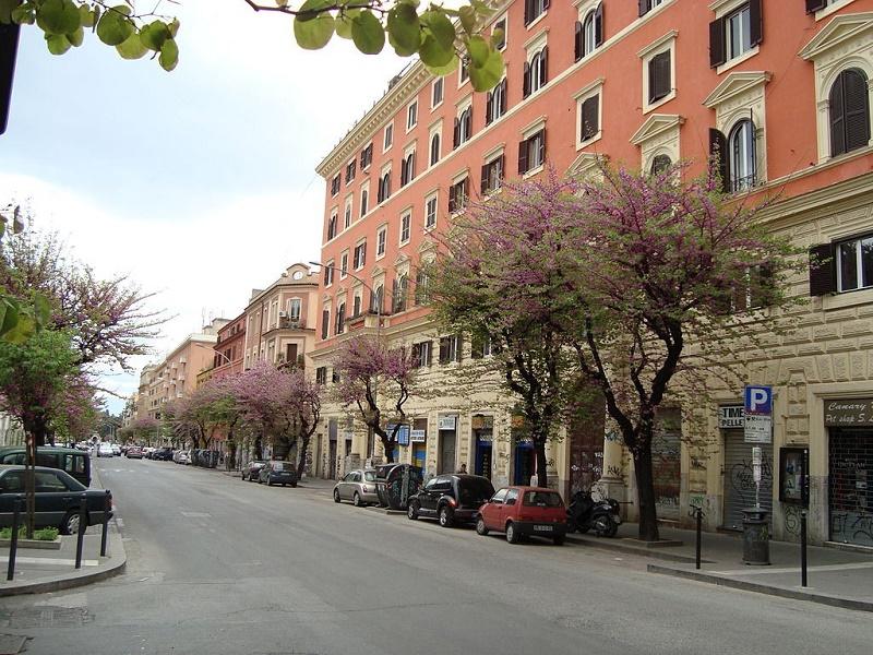 San Lorenzo neighborhood