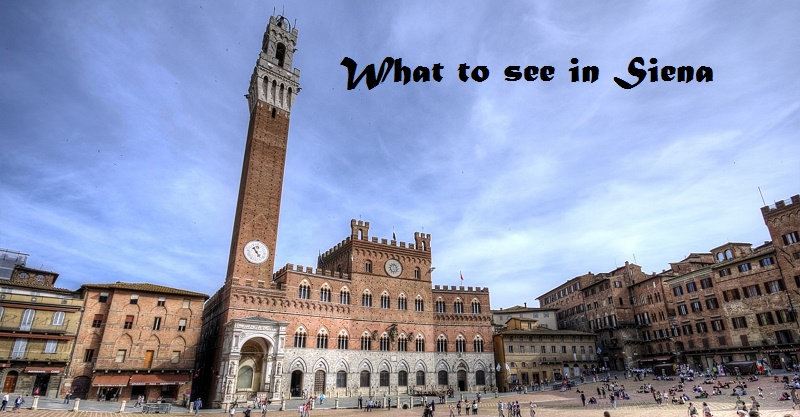 What to see in siena