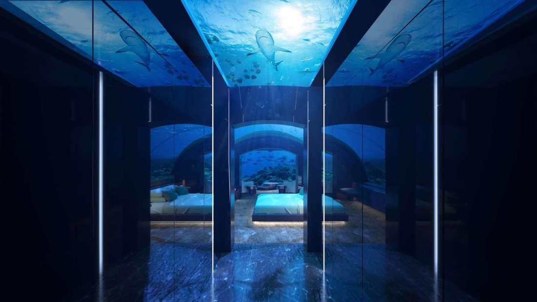 Maldivian marine world