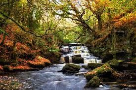 A Peaceful Irish Escape Exploring Tullamore
